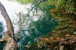 90m tiefe Cenote Azul